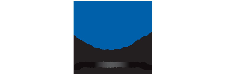 https://rssm.biz/wp-content/uploads/2021/01/npa-logo.png